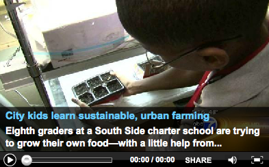 City Kids Learn Sustainable, Urban Farming
